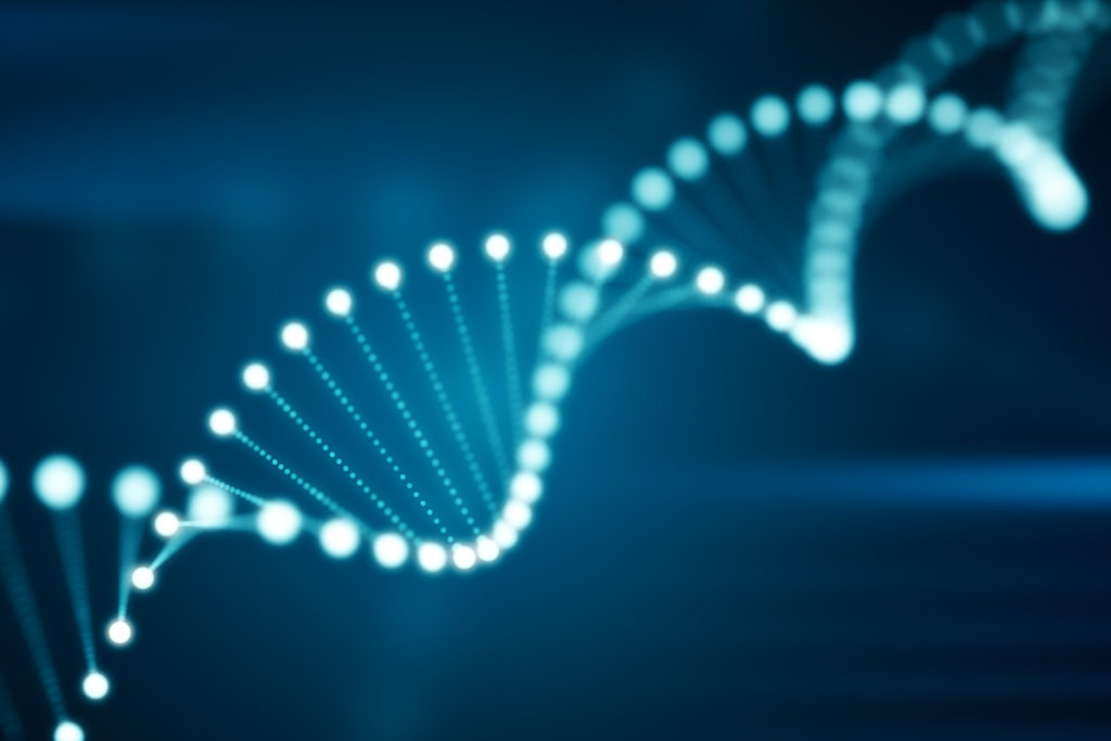 Anti-aging DNA double helix